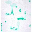 Souvenirs de Paris - Aqua