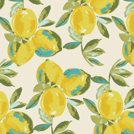 Yuma Lemons - Art Gallery
