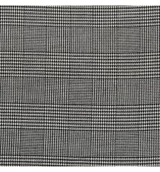Prince of Wales black & white plaid