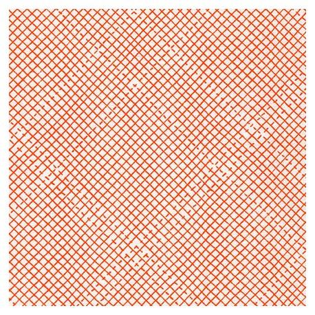 Euclid Tangerine - Robert Kaufman