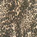 Leopard Wool Coating - Lady McElroy